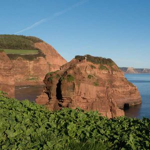 Discover beautiful scenery - Kokopelli - Sidmouth, Devon Holiday Cottage